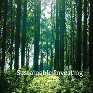 Sustainability Ratings – Will Your Firm Be Able To Capitalize On This New Trend?